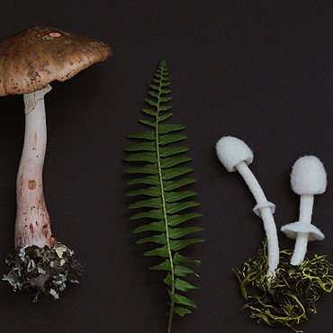 Felted Mushrooms by TrendeFemme